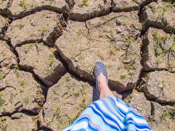 161104-lake-purdy-drought-_mg_7903