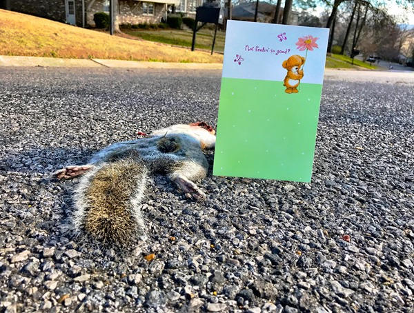 Get Well Soon Squirrel 1
