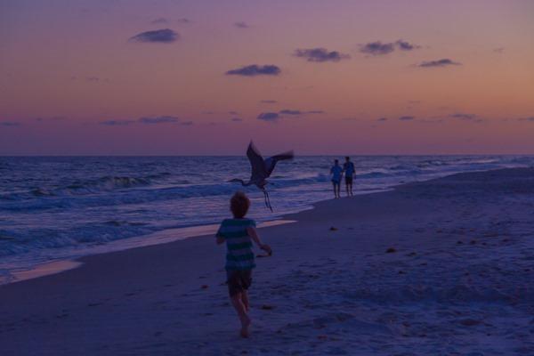 170421h-Gulf-Shoress