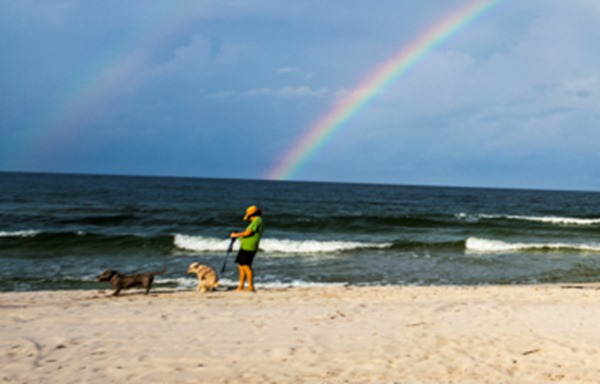 170818-Rainbow-in-Cape-San-Blas-Pooping-Dog_MG_2895 s