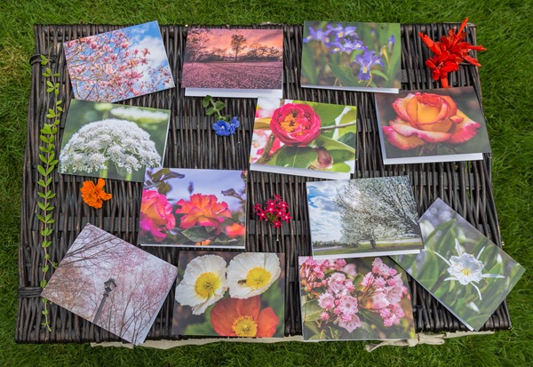 Floral-Note-Cards