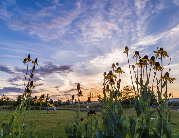 2018 Calendar April170602 Sunset at Railroad Park _MG_9334 s[16]