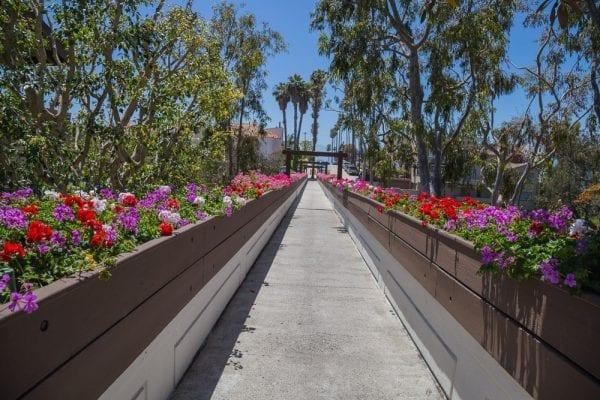 180509 Sights of Newport Beach IMG_8595