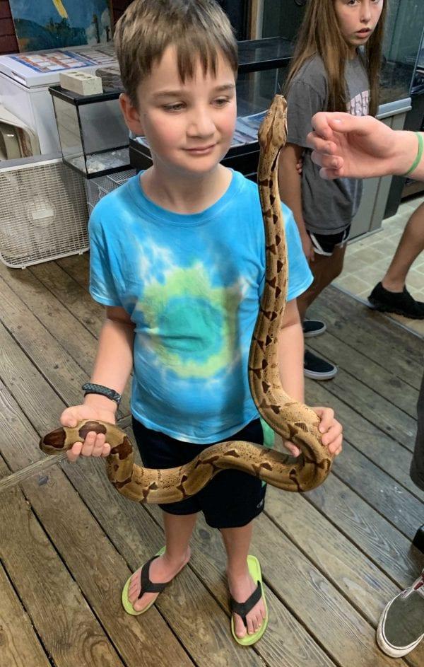 large python IMG_0893