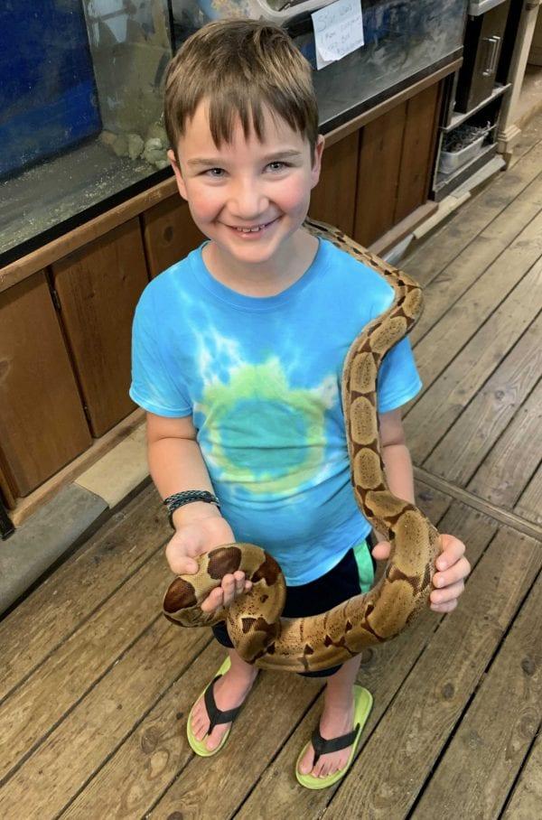 large python IMG_0905