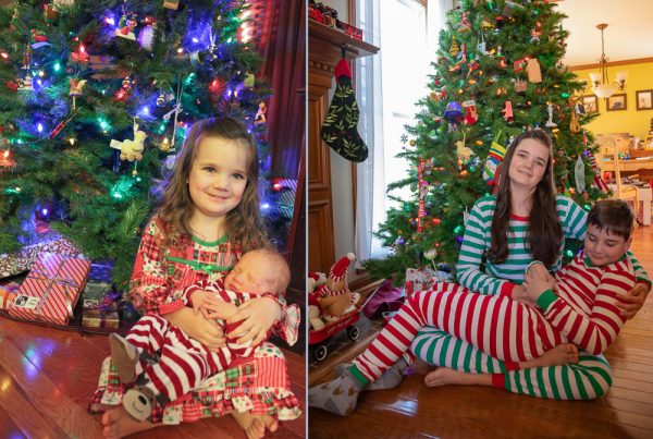 Buddy The Snake 2019 christmas photos remake small